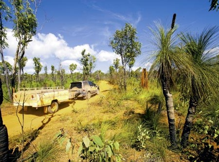 The Old Telegraph Track up Cape York