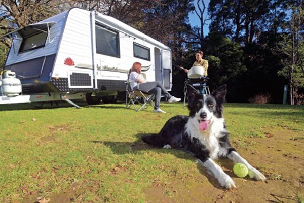 Caravanning with pets