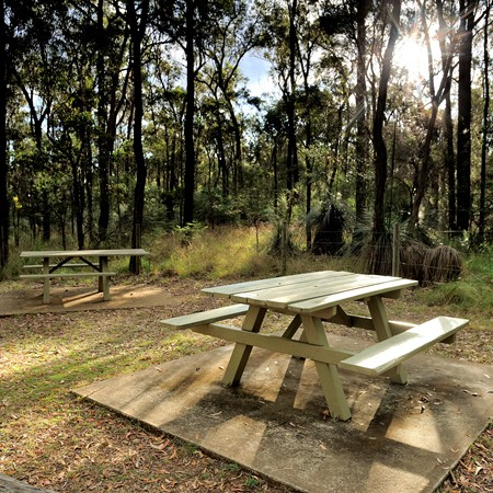 Smoking is banned in Qld national parks.