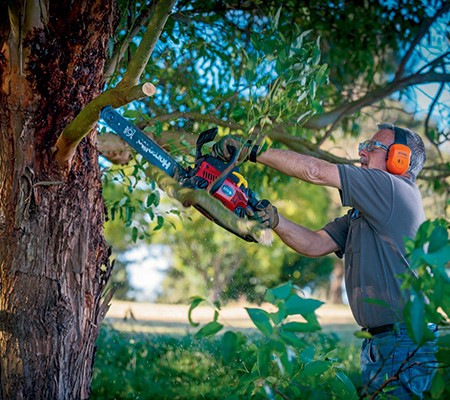 Top 10 chainsaw maintenance tips