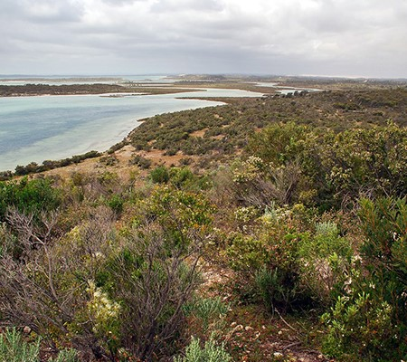 Spectacular coastline from Yangie Lookout.