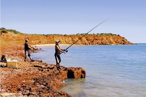 SHARK BAY WESTERN AUSTRALIA-17.jpg
