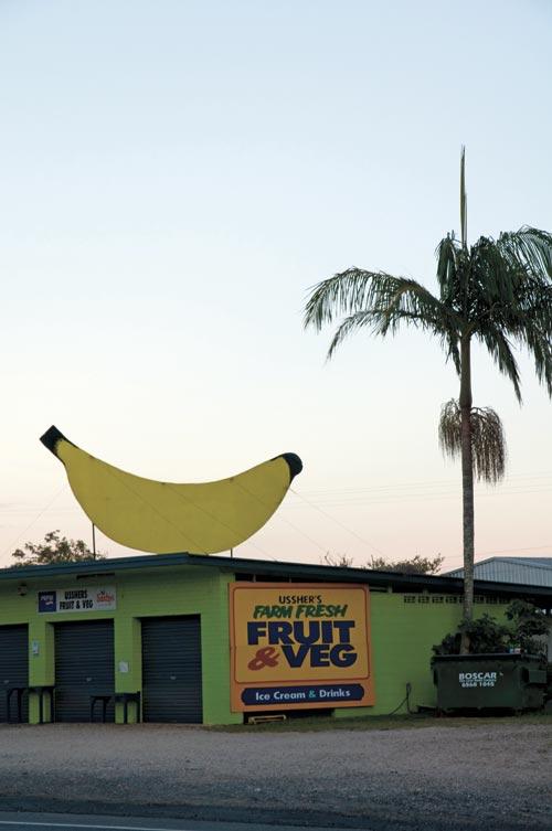 Coffs Harbour Small banana stand.jpg
