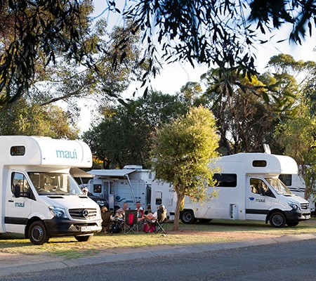 Specialist field officers will deliver census forms to campgrounds and caravan parks such as the Big