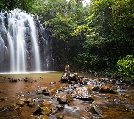 Top Family Touring Itineraries: Atherton Tablelands