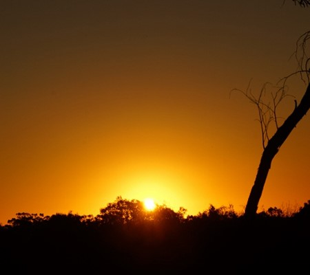 The dust makes for wonderful sunrises and sunsets and there are plenty of starry, starry nights