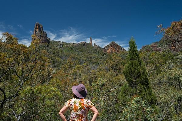Warrumbungle National Park, NSW