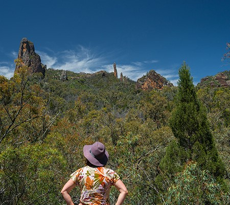 Warrumbungle National Park, NSW