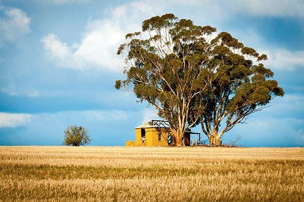 The Wheatbelt Region