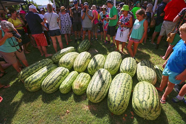 Chinchilla Melon Fest, Qld