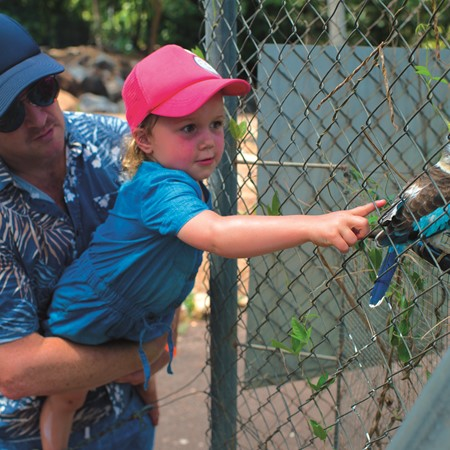 NT Croc Park is for families