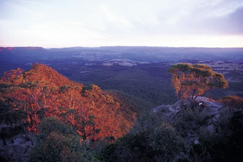 The Blue Mountains' Megalong Valley