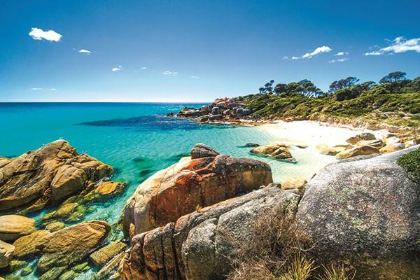 Top beach camps of Tasmania