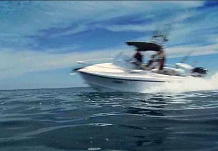 Bass Strait Ocean Pro 600