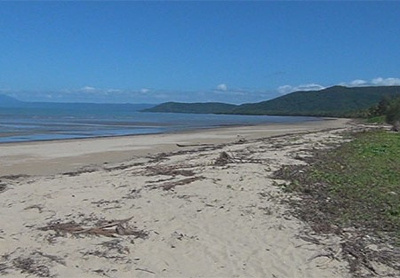 Travel video: Daintree