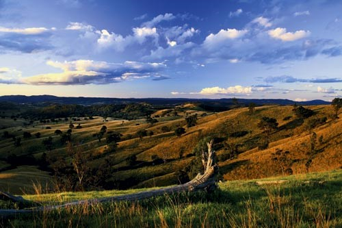 Mudgee countryside, NSW.