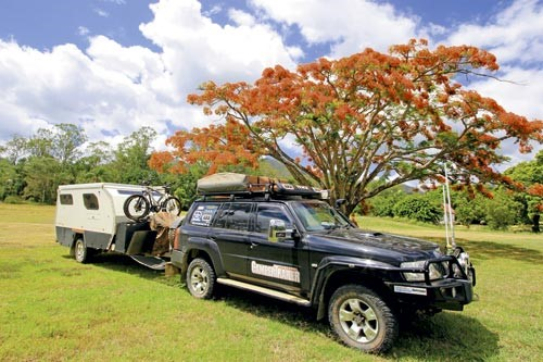 Camper trailer under a beautiful poinciana tree