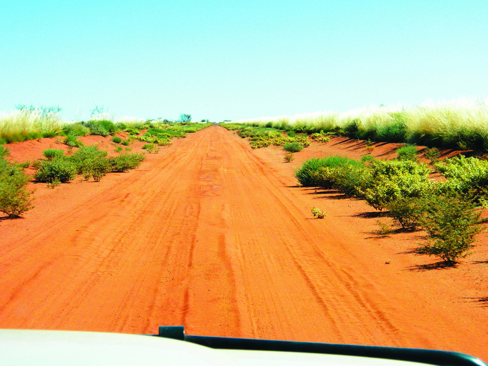 A red dirt road, surrounded by green shrubbery, stretches into the distance