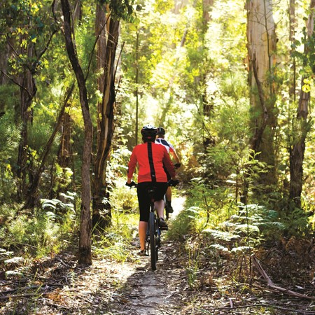 Taking a ride in Gippsland. CREDIT: Destination Gippsland/Visit Victoria