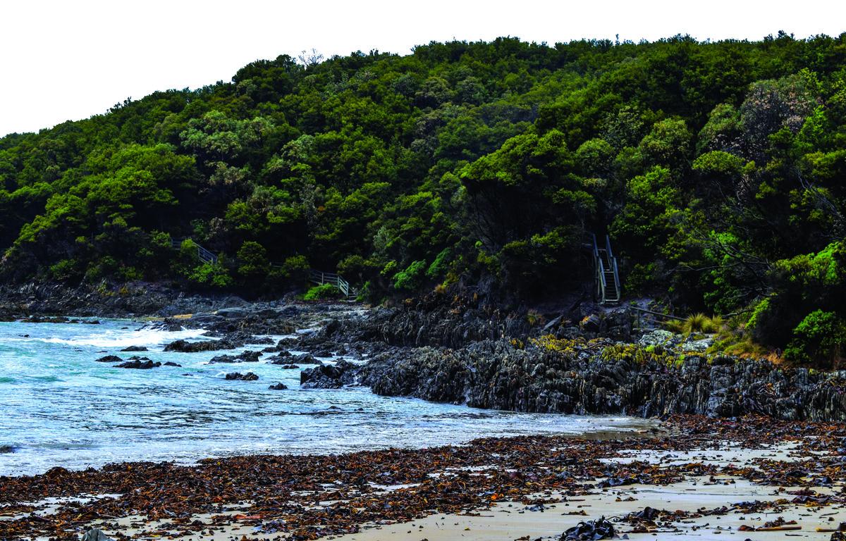 Cape Conran