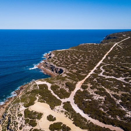 Great Australian Bight: The Edge of the Earth