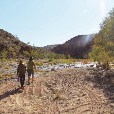 Family Adventure, Part 5: The MacDonnell Ranges
